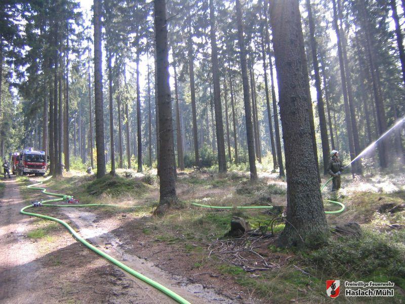 F&B Übung – Waldbrand in Afiesl