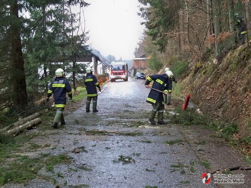 Einsätze während Sturmtief Niklas