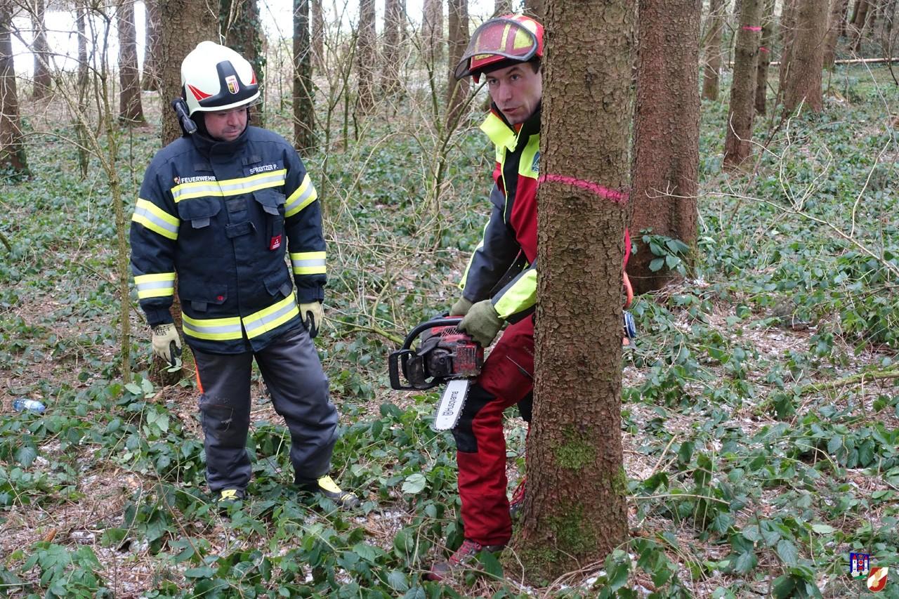 Gruppenübung Forst