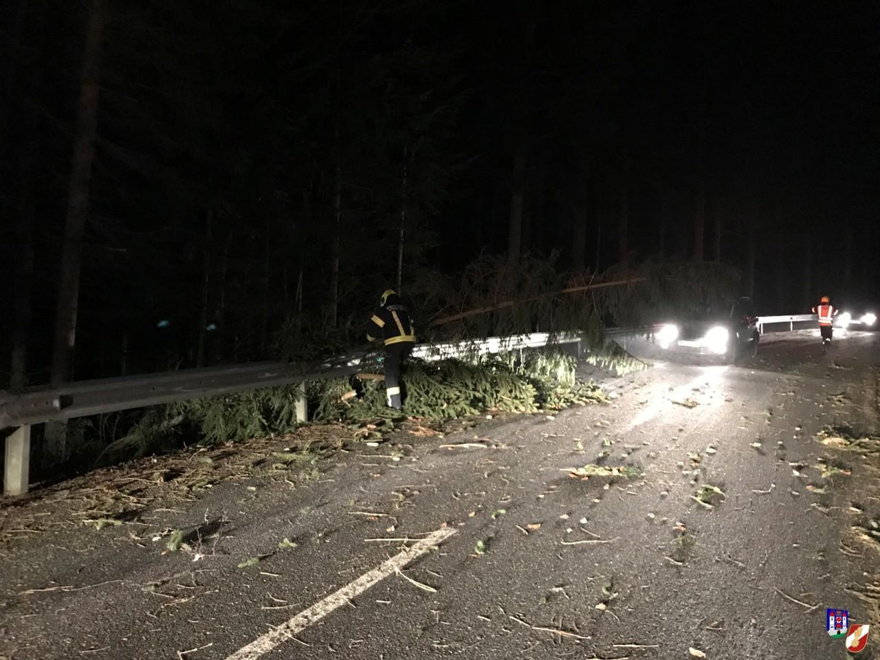 Baum blockierte Straße