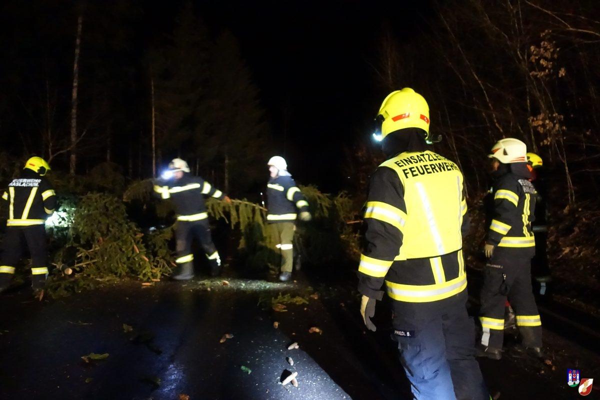 Bäume blockieren Landesstraße und Brandmeldealarm
