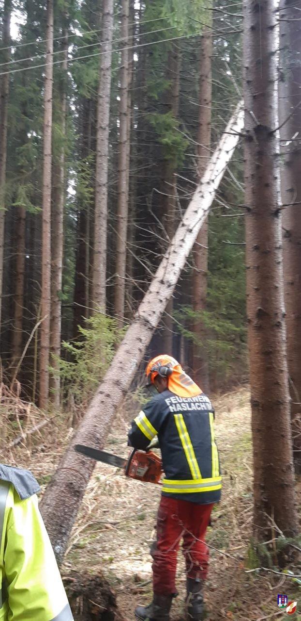 Personenrettung und Sturmschäden in Haslach