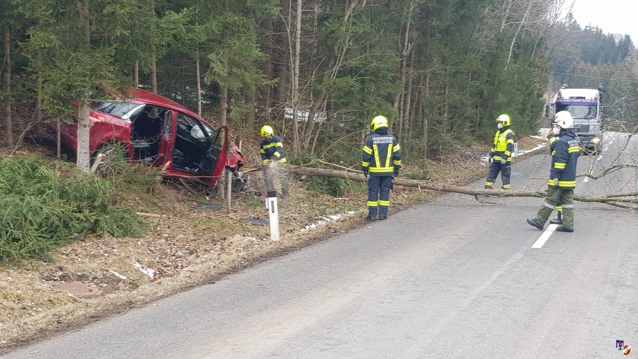 tödlicher Verkehrsunfall in Haslach
