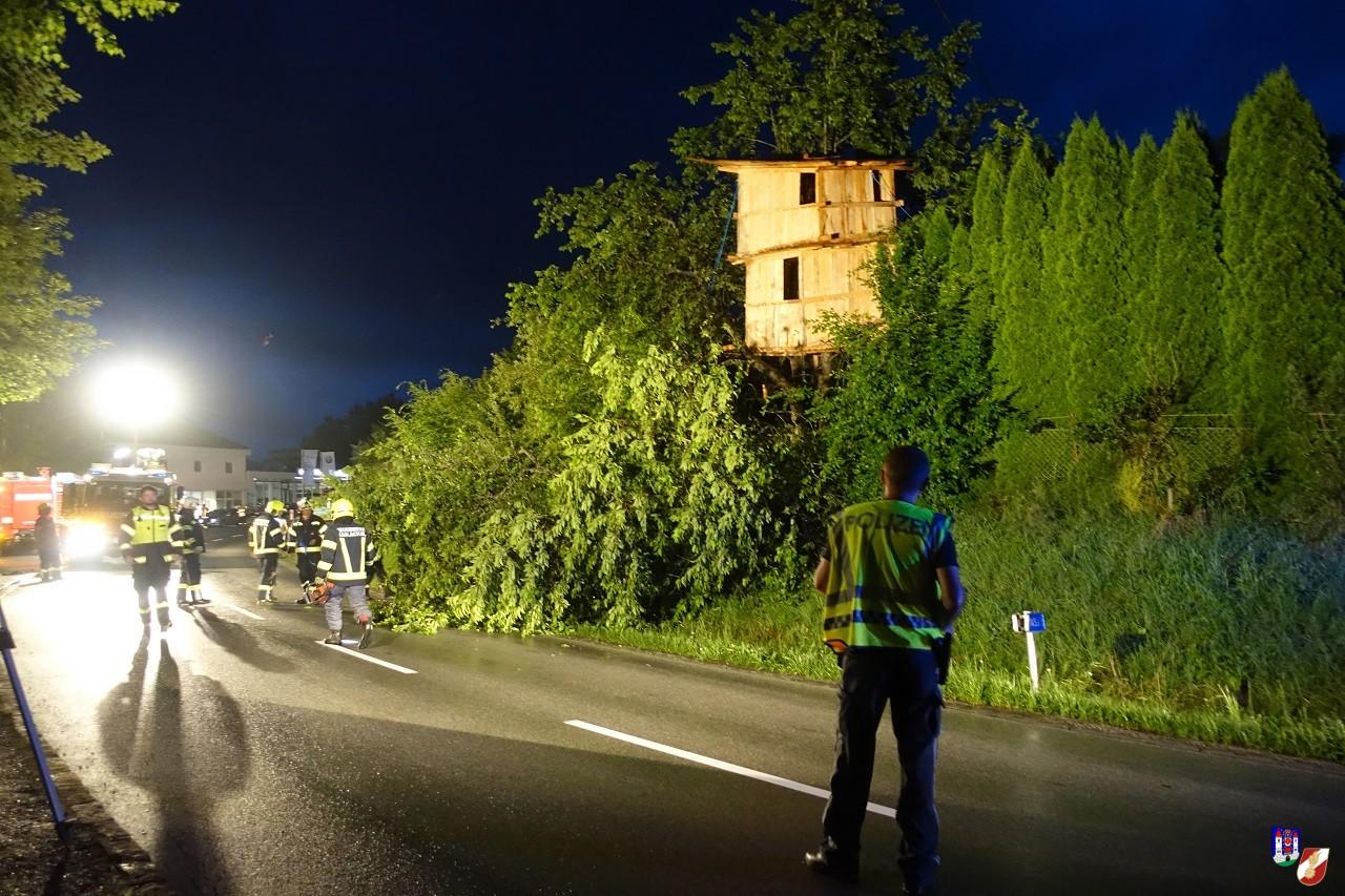 Langwieriger Sturmschaden erfordert Straßensperre
