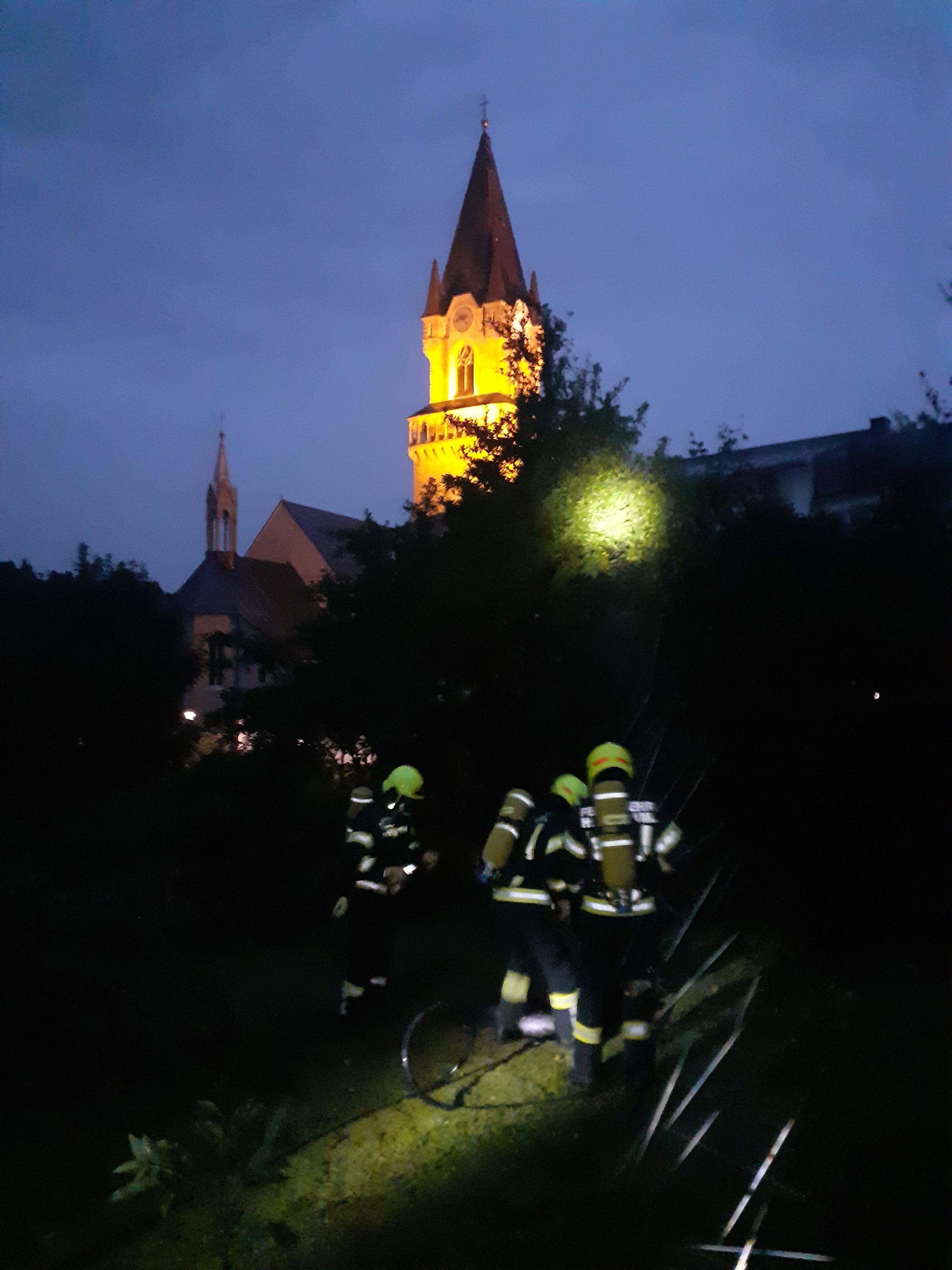 Brand eines Baumstumpfes